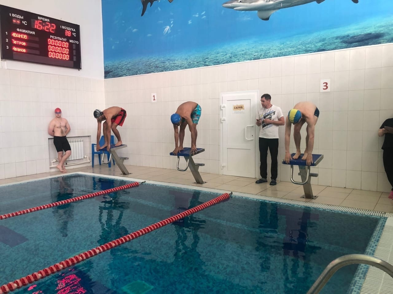 An Egyptian student won a prize at a swimming competition at Pitirim Sorokin Syktyvkar State University